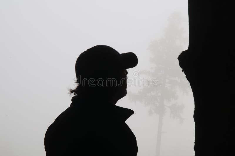 Ombre e nebbia fotografia stock