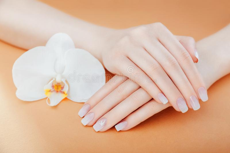 Ombre french manicure with white orchid on orange background. Female hands with white ombre french manicure. Ombre french manicure with sparkles and orchid on royalty free stock images