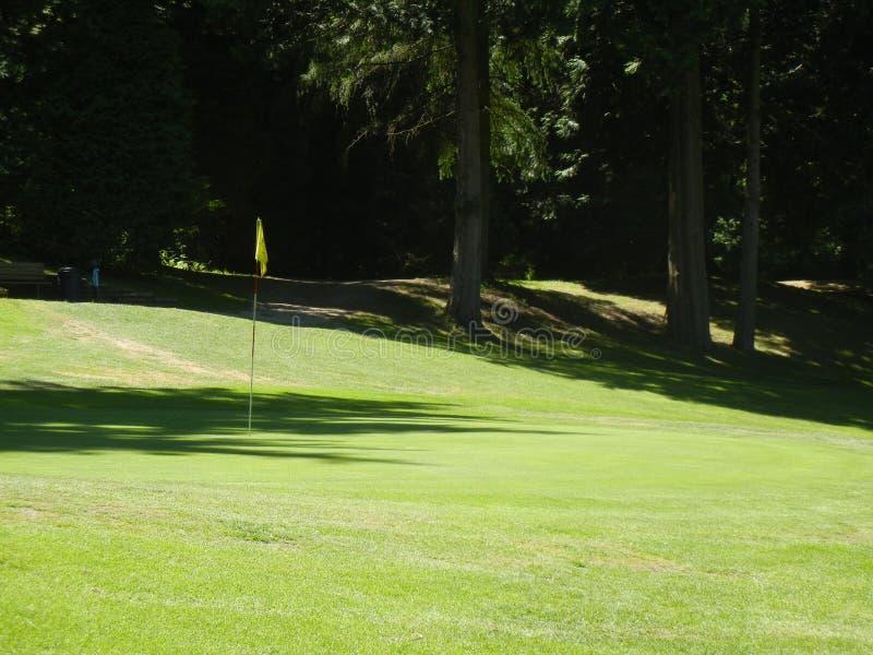 Download Ombre sul verde fotografia stock. Immagine di golf, pomeriggio - 55357930