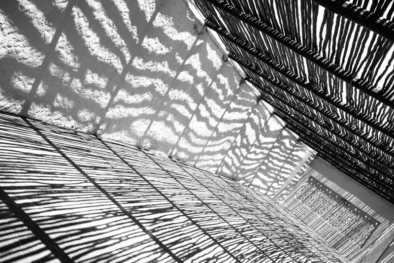 Ombreggia in bianco e nero fotografie stock