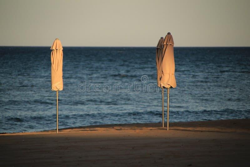 Ombrelli di spiaggia sulla spiaggia al tramonto fotografie stock libere da diritti