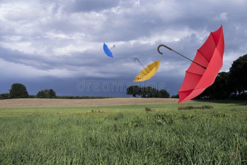 Ombrelli e nuvole di tempesta fotografie stock libere da diritti