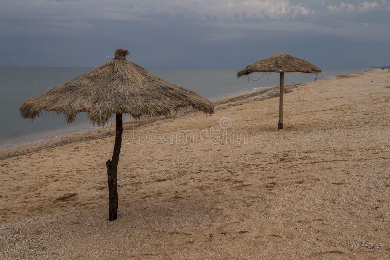 Ombrelli fatti di bambù e delle canne fotografia stock