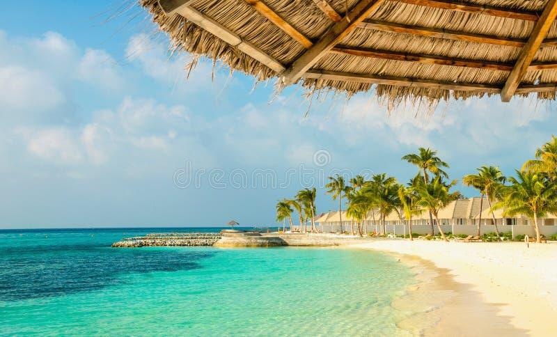 Ombrello della palma e spiaggia sabbiosa delle Maldive namazing, Maldive fotografie stock