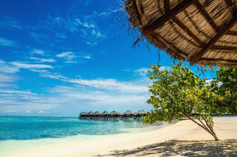 Ombrello della palma su una spiaggia esotica sui precedenti delle case sull'acqua fotografie stock libere da diritti