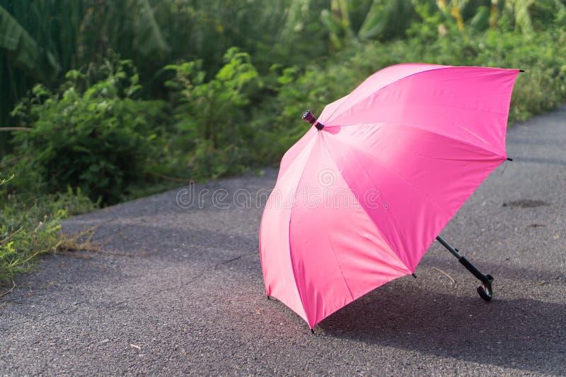 Ombrello rosa sul pavimento di calcestruzzo e sul campo di erba verde nel parco fotografia stock libera da diritti