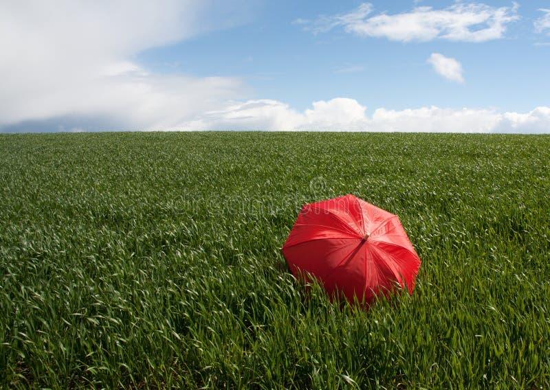 Ombrello rosso sul prato verde immagini stock libere da diritti