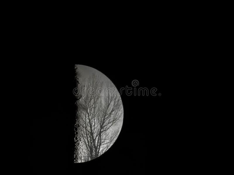 Ombres à la lune photographie stock