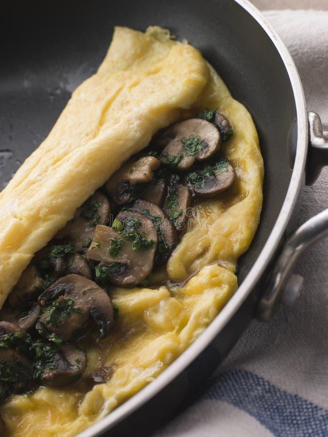 Omeleta do cogumelo dobrada em uma bandeja da omeleta foto de stock