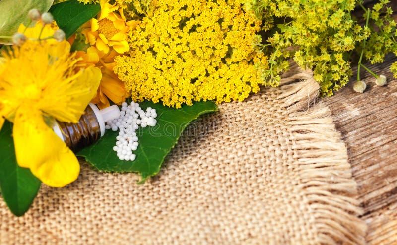 Omeopatia, globuli ed erbe medicinali immagini stock