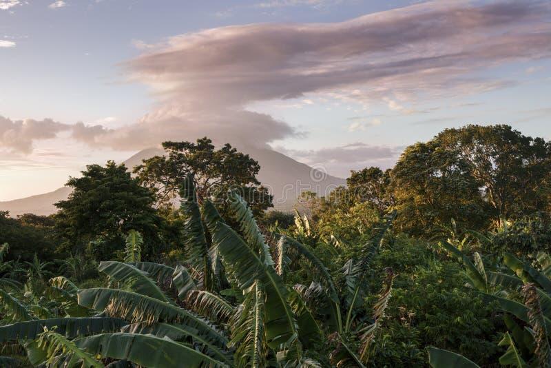 Ometepeeiland in Nicaragua stock foto's