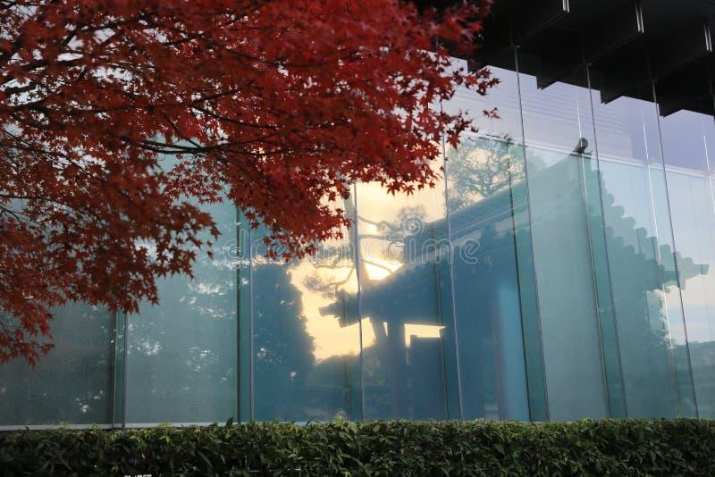 Omgekeerd van venster byodo-in Tempel en tuin in Kyoto royalty-vrije stock foto's
