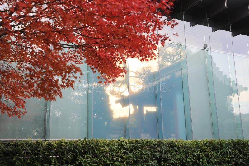 Omgekeerd van venster byodo-in Tempel en tuin in Kyoto stock afbeeldingen