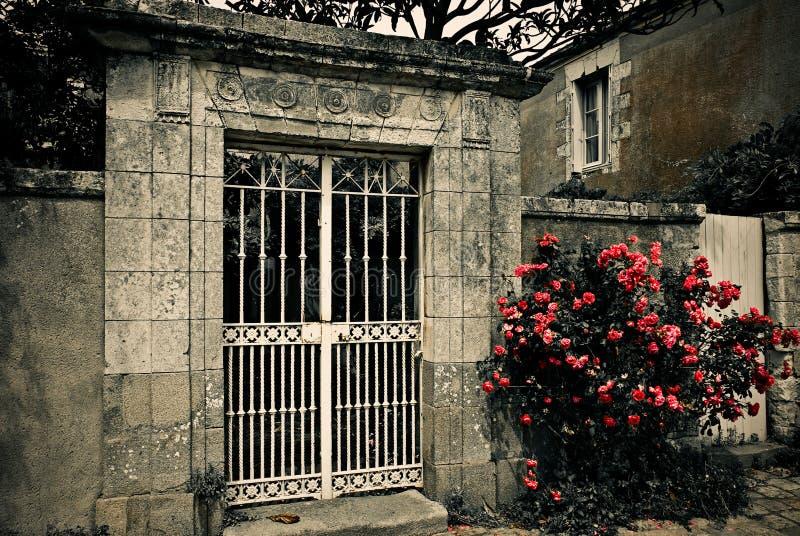 Omheining en bloemen royalty-vrije stock afbeelding