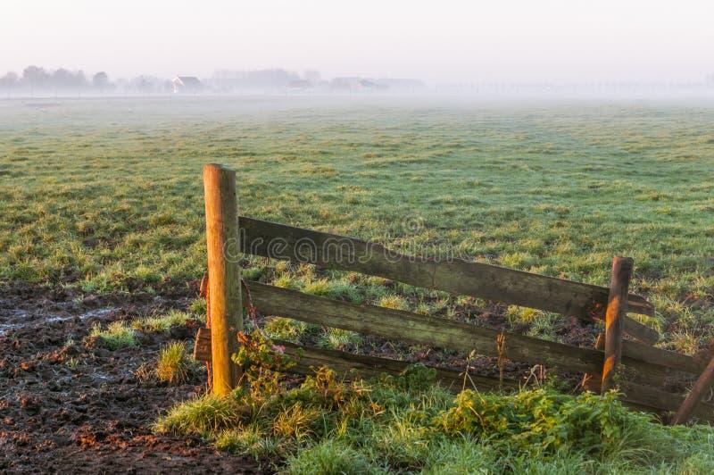 Omheining en landbouwgrond op een nevelige ochtend tijdens zonsopgang stock foto's