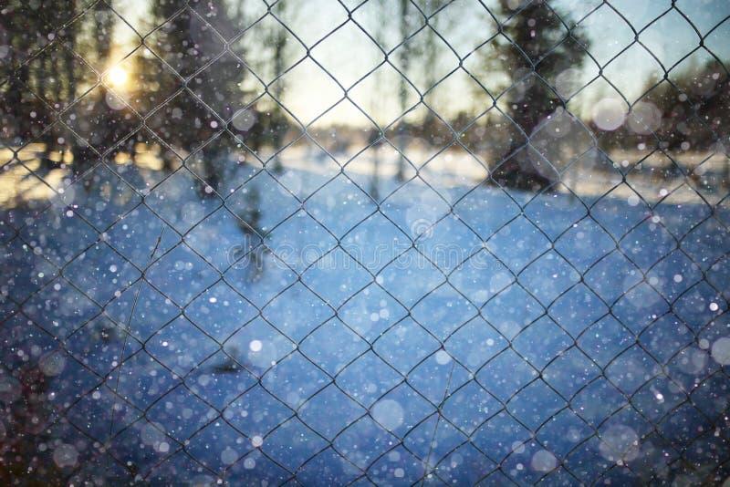 Omheining op de winterachtergrond stock afbeelding