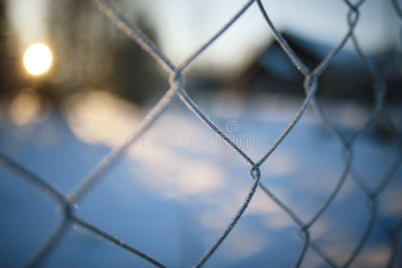 Omheining op de winterachtergrond stock fotografie