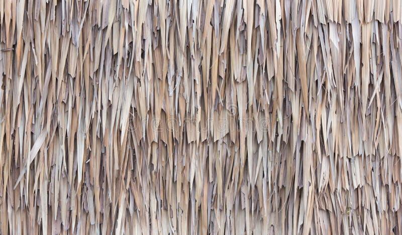 Omheining van Droge Nipa-Palmbladen wordt gemaakt dat royalty-vrije stock foto's