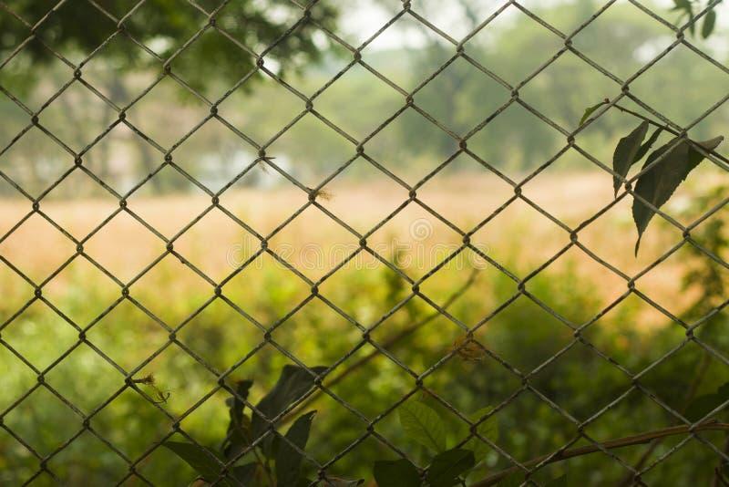 Omheining van getelegrafeerd die staal wordt gemaakt in vergiet met vaag landelijk voetbalgebied wordt ontworpen op achtergrond d stock fotografie