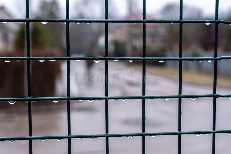 Omheining van het netclose-up met dalingen na regen - Beeld stock afbeelding