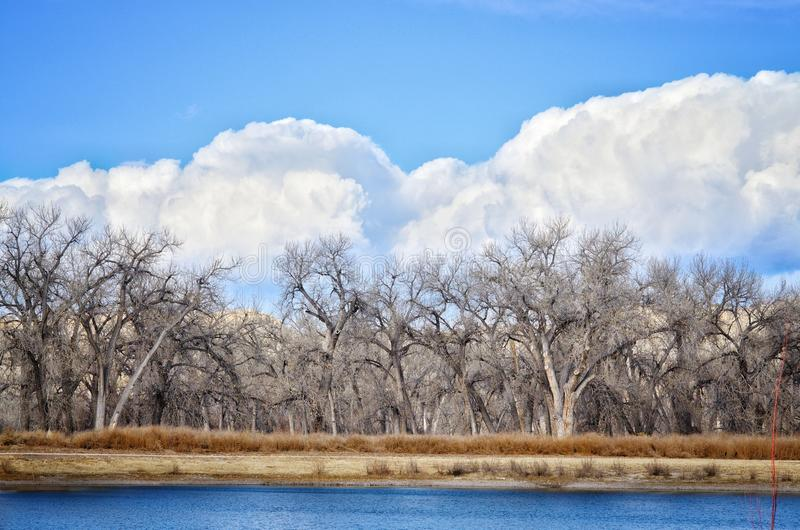 Ominous Clouds Flank the Cottonwood Forest at Lake Pueblo State Park, Colorado. Shot with the Anticline Fishing Pond in the foreground stock image