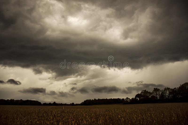 OMINOUS STORM CLOUDS ON HORIZON. Ominous clouds gather on the horizon as they slowly overtake the sky with a field of soybeans in the foreground stock images