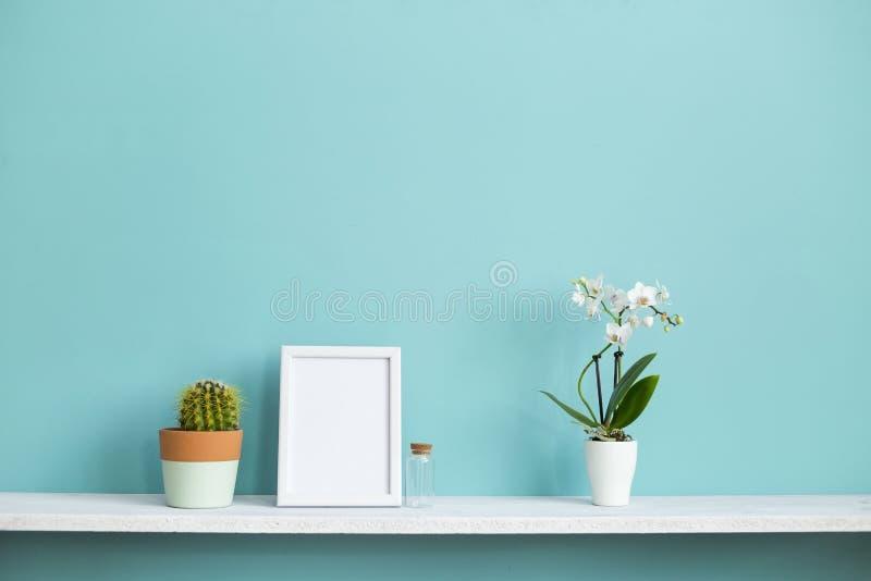 Omlijstingmodel Witte plank tegen pastelkleur turkooise muur met ingemaakte orchidee en cactusinstallatie stock afbeeldingen