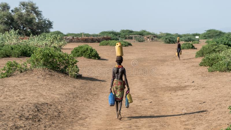 Unidentified woman from Dassanech tribe carrying water to her village, Ethiopia. Omorate, Ethiopia - September 2017: Unidentified woman from Dassanech tribe stock images