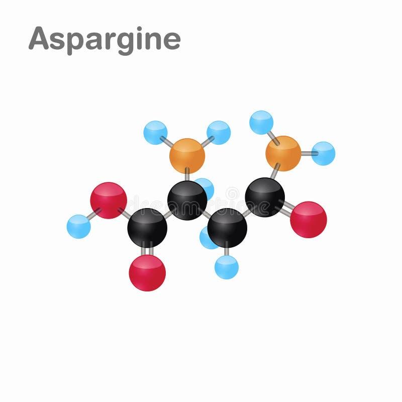 Omposition y estructura moleculares de la asparragina, Asn, mejor para los libros y la educación libre illustration