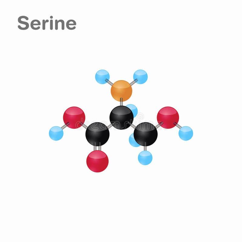 Omposition y estructura moleculares de la serina, Ser, mejor para los libros y la educación ilustración del vector