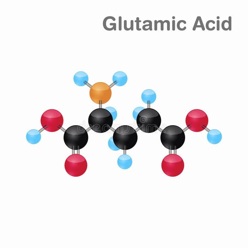 Omposition y estructura moleculares del ácido glutámico, Glu, mejor para los libros y la educación stock de ilustración