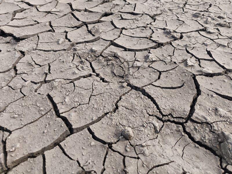 Område av torkat land som lider från torkan, jordsprickor royaltyfri foto