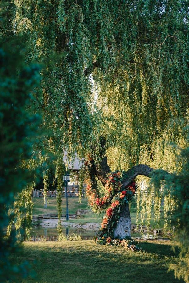 Område för bröllopceremoni, bågestoldekor fotografering för bildbyråer