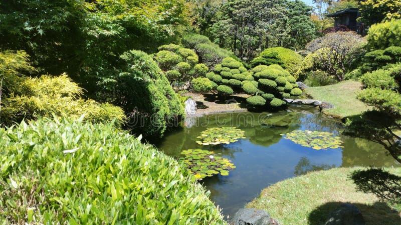 Område för San Francisco japanbotanisk trädgård royaltyfri bild