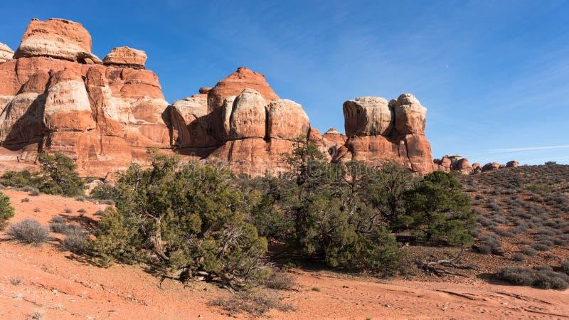 Område Utah för Canyonlands nationalparkvisare arkivfoton