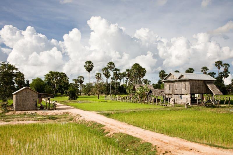 områdesbattambang lantliga cambodia royaltyfria bilder