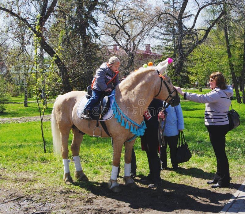 OMSK RYSSLAND - MAJ 09, 2015: barns hästridning på ponny royaltyfri fotografi