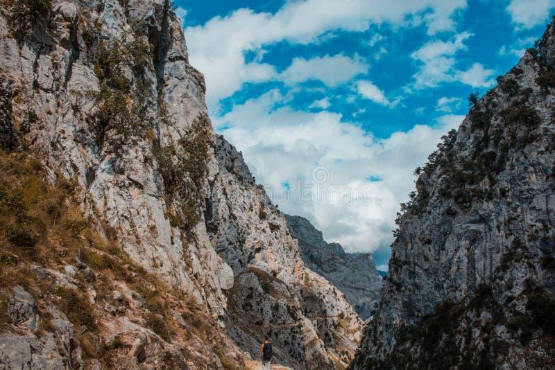 Omsorger sänder i Picosen de Europa, berglandskap royaltyfri bild