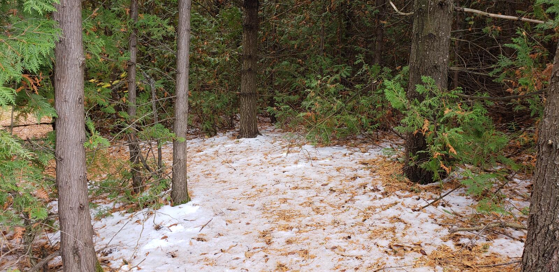 Onaangeroerde sneeuw royalty-vrije stock foto