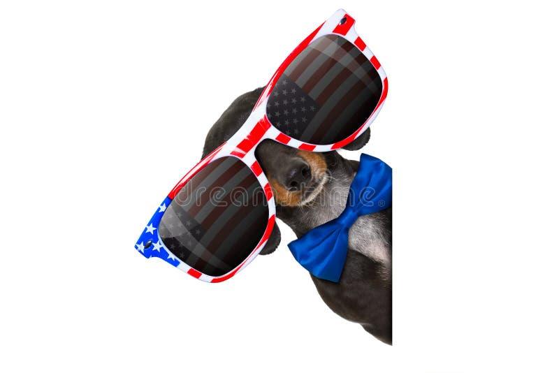 Onafhankelijkheid dag vierde van juli-hond stock afbeelding
