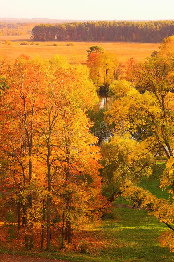Onange autumn park stock photos