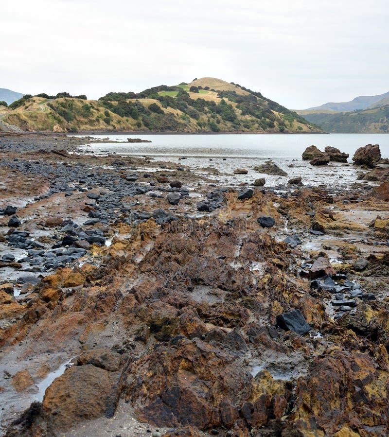 Onawe Paninsula Volcanic Plug, Akaroa Harbor, Nuova Zelanda fotografia stock
