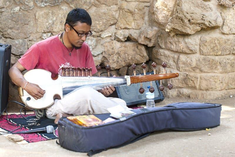 Onbekende straatmusicus die de sitar Indiër spelen royalty-vrije stock afbeelding