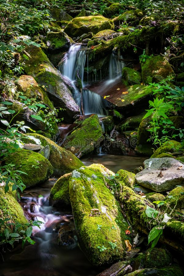 Onbekende Waterval in Smokies royalty-vrije stock fotografie