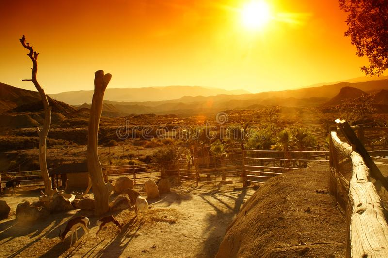 Once upon a time in the west stock photos