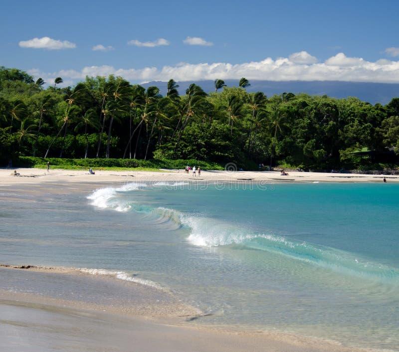 Onda corta de la resaca en la playa de Mauna Kea, isla grande, Hawaii fotos de archivo