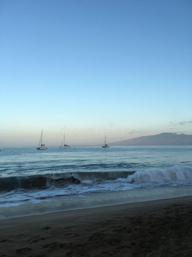 Onda de observação ajustada da onda do sol de Havaí sobre à praia fotos de stock royalty free