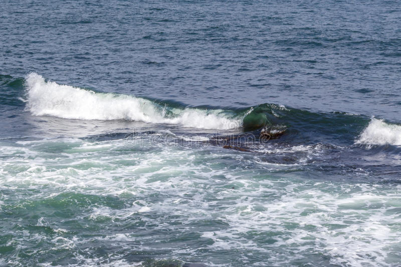 Onda de oceano em Oceano Atlântico fora da costa de Rhode - ilha fotos de stock