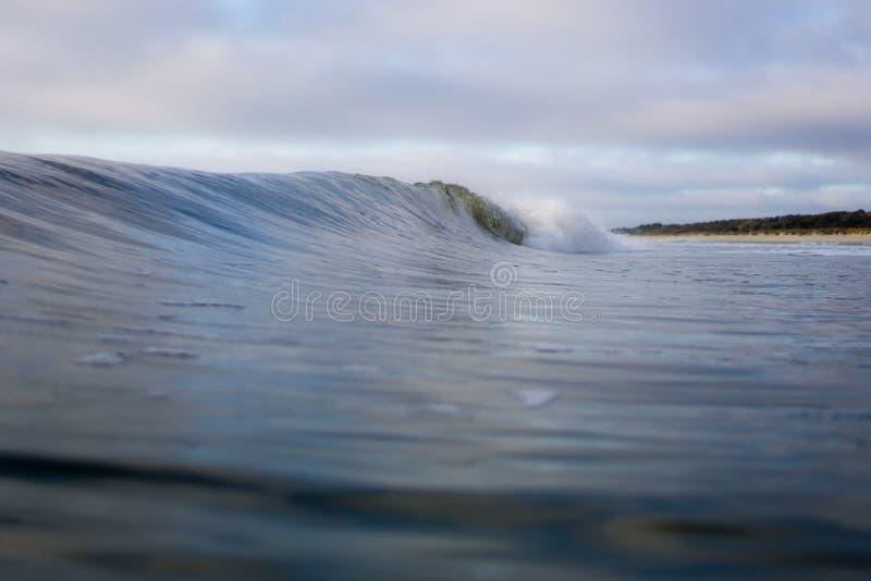 Onda de oceano de quebra friável fora de Sandy Forested Beach foto de stock royalty free
