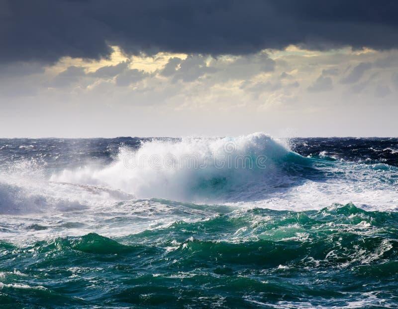 Onda del mare durante la tempesta fotografia stock libera da diritti